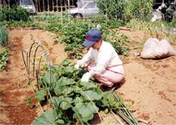 県内市民農園ガイド
